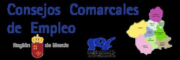 Programa anual de CONSEJOS COMARCALES 2014