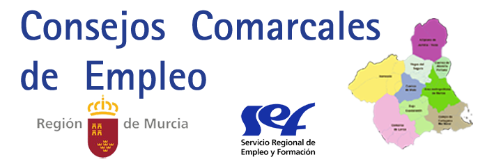 65488-ConsejosComarcalespng