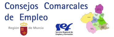 LISTADO DEFINITIVO CONSEJOS COMARCALES DE EMPLEO 2020