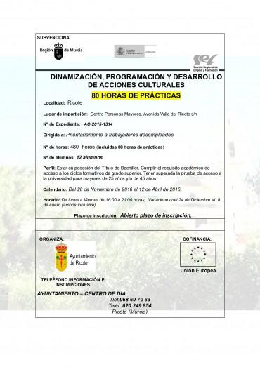 CURSO DINAMIZACIÓN, PROGRAMACIÓN Y DESARROLLO DE ACCIONES CULTURALES