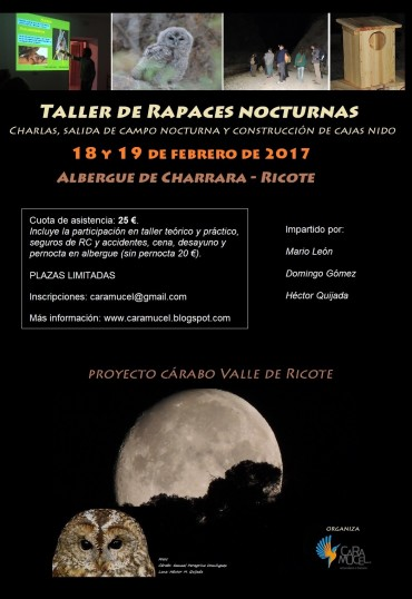 TALLER DE RAPACES NOCTURNAS