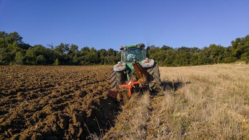 Cómo puedo ofrecerme para trabajar en el sector agrario?